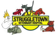 Struggletown Vet Hospital